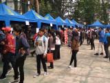 Kolaborasi Pemkot dan KNPI dalam Job Fair Online