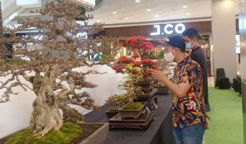 Pecinta Bonsai, Yuk ke Green Fortune di Tangcity Mall